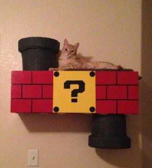 Super Mario Temalı Kedi Tırmanma Platformu