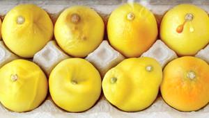 Hayatınızı Kurtarabilecek 12 Limon