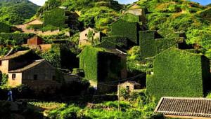 Terk Edilmiş Balıkçı Köyünü 'Tabiat Ana' Ele Geçirdi