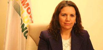 HDP'li Milletvekiline 'Cumhurbaşkanına Hakaret'ten 4 Yıla Kadar Hapis İstemi