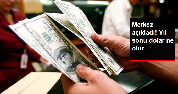 Merkez Bankası'nın Yıl Sonu Dolar/TL Beklentisi 3,86 TL