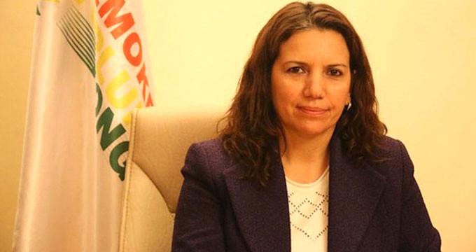 HDP'li milletvekiline 4 yıla kadar hapis istemi!