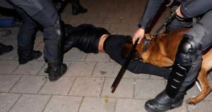 Hollanda'da polisin köpekle saldırdığı vatandaş İstanbul'a getirildi