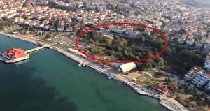 İstanbul'da ağaç katliamı! Dev park beton yığınına dönüşecek