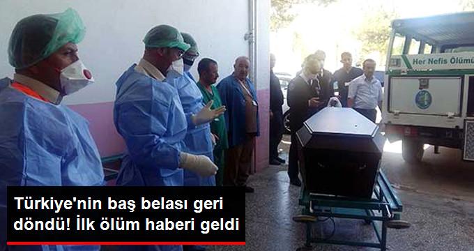 TÜRKİYE'NİN BAŞ BELASI GERİ DÖNDÜ! İLK ÖLÜM HABERİ GELDİ