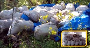 PKK'ya geçit yok! Çuval çuval istifledikleri zehir ele geçirildi