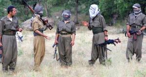 Vali resmen açıkladı: PKK'nın Akmeşe grubu tamamen imha edildi