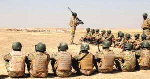 Barzani'yi bypass edecek sınırı, Başika koruyacak!