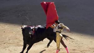 Matadorla Boğanın Savaşı