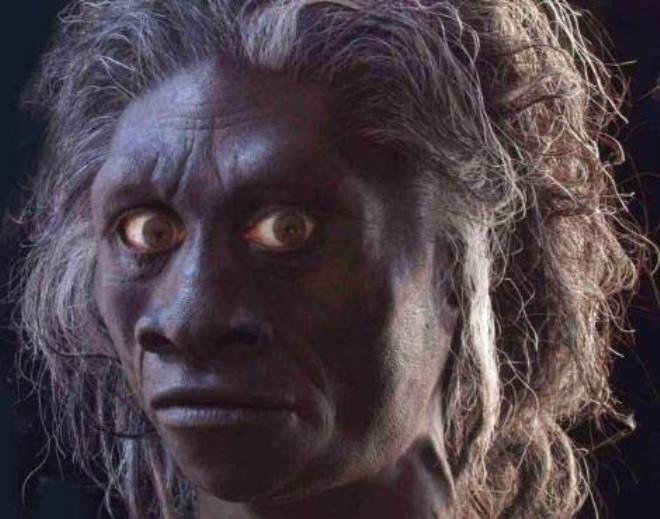 Anadolu'da 500 bin yıllık 'Homo Erectus' fosili