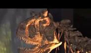 Dinozorlar Kopenhag'da