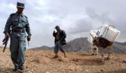 Afganistan'da Eşek Yüküyle Demokrasi