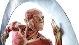 'Body Worlds' Yenilendi