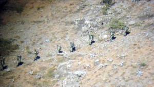 Kato Dağı Operasyonundan Kareler