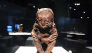 6 Bin 500 Yıl Hiç Yaşlanmadı