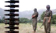 PKK'nın Dağ Kadrosunun Yaklaşık Yarısı...