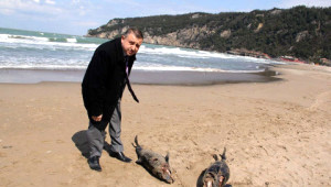 Karadeniz'de Katliam
