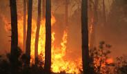 Karabük'te Çıkan Yangın Büyüyor