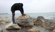 Deprem, Van Gölü'nün Şeklini Değiştirdi