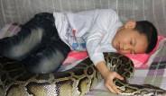 13 Yaşındaki Çocuk Pitona Sarılıp Uyuyor