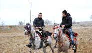 Tarihi Filmlerin Atları Uşak'tan