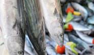 Kalbi Koruyan 14 Balık