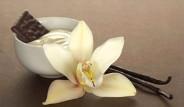 Vanilyanın 9 Faydası