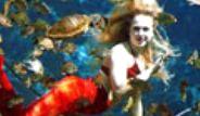 Deniz Kızlarının Zor Mesaisi