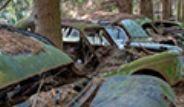 Belçika'da Ormanda Terk Edilmiş 500 Araç Bulundu