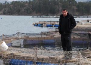 Fabrikanın Atığı Yüzbinlerce Balığı Telef Etti