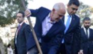 Yorgo Papandreu, Gezi Parkı'na Fidan Dikti
