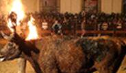 İspanya'da Düzenlenen ''Toro Jubilo'' Festivali Tepki Gördü