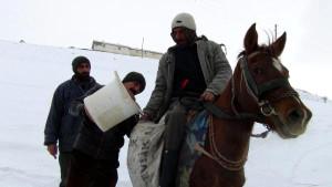 At Sırtında Su Taşıyorlar