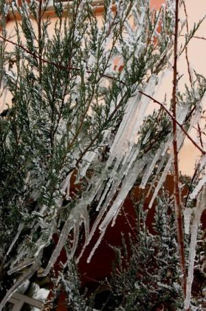 Iğdır Tuzluca'da Dondurucu Soğuk