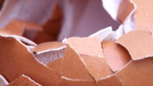 Yumurta Kabuğunun Mucize Faydası!