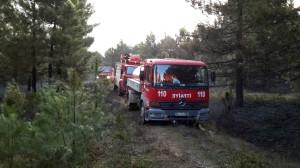 Yalova Esenköy'de Orman Yangını