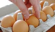Zayıflatan Mucize: Yumurta