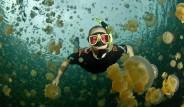 Denizanası Gölü'nün İnanılmaz Fotoğrafları