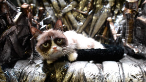 Grumpy Cat, Game Of Thrones Tahtında