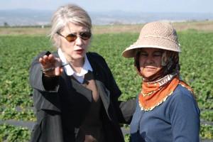 CHP'li Tarhan'dan Çilek Tarlasında