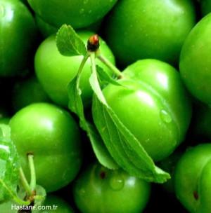 Yeşil Erik Vücudumuzda Neler Yapar?