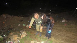 Hanönü'nde Köpek Katliamı