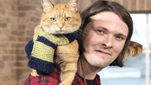 Sokak Kedisi Hayatını Değiştirdi