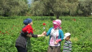 Aydın Büyükşehir Belediyesi Anneleri Unutmadı