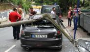 Arabasını Bıraktı, Döndüğünde Şok Yaşadı