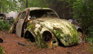 Belçika Ormanlarındaki Gizemli Araba Mezarlığı