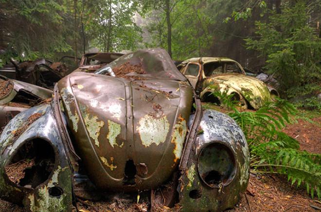 Belçika Ormanlarındaki Gizemli Araba Mezarlığı Foto Galerisi