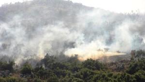 Isparta'da Makilik Alanda Yangın (2)