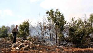Göksun'da Ormanlık Alanda Yangın