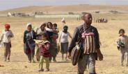Newroz Kampı'na Sığınan Ezidiler IŞİD Vahşetini Anlattı